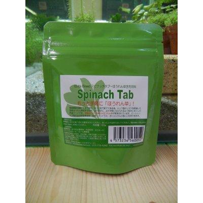 画像1: Spinach Tab スピナッチタブ 50g(Ebita Breed)